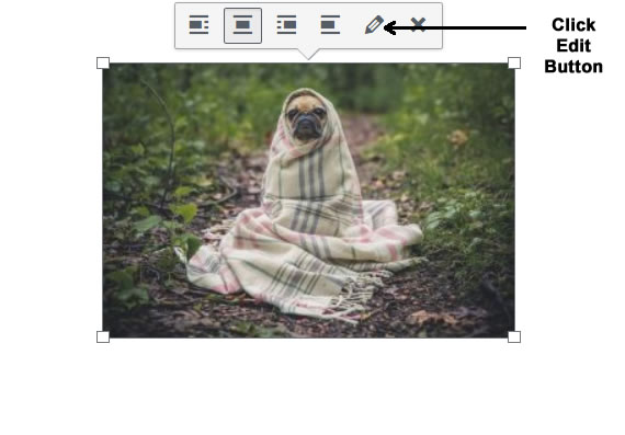 Edit Image in WordPress