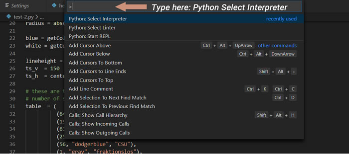"""Type """"Python Select Interpreter"""" in Command Palette"""