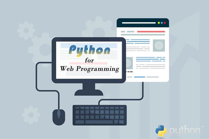 Python For Web Programming