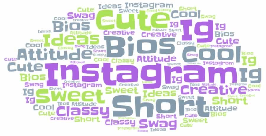 Short Unique Instagram Bios